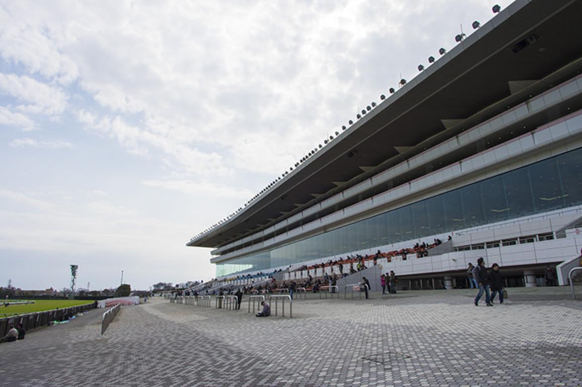 【中山記念2020予想】出走予定馬・騎手|過去10年データ分析
