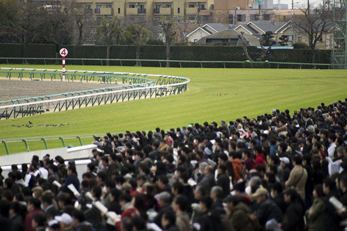 5月1日(土)第28回テレビ東京杯青葉賞の指数と展望