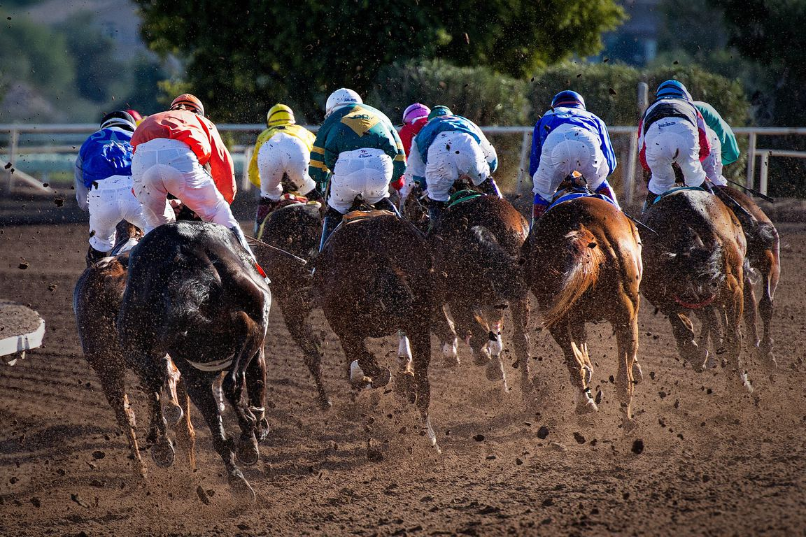 2/4大井競馬の軸馬予想ブログ