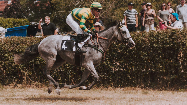 3月13日(土)第39回中山牝馬ステークスの指数と展望