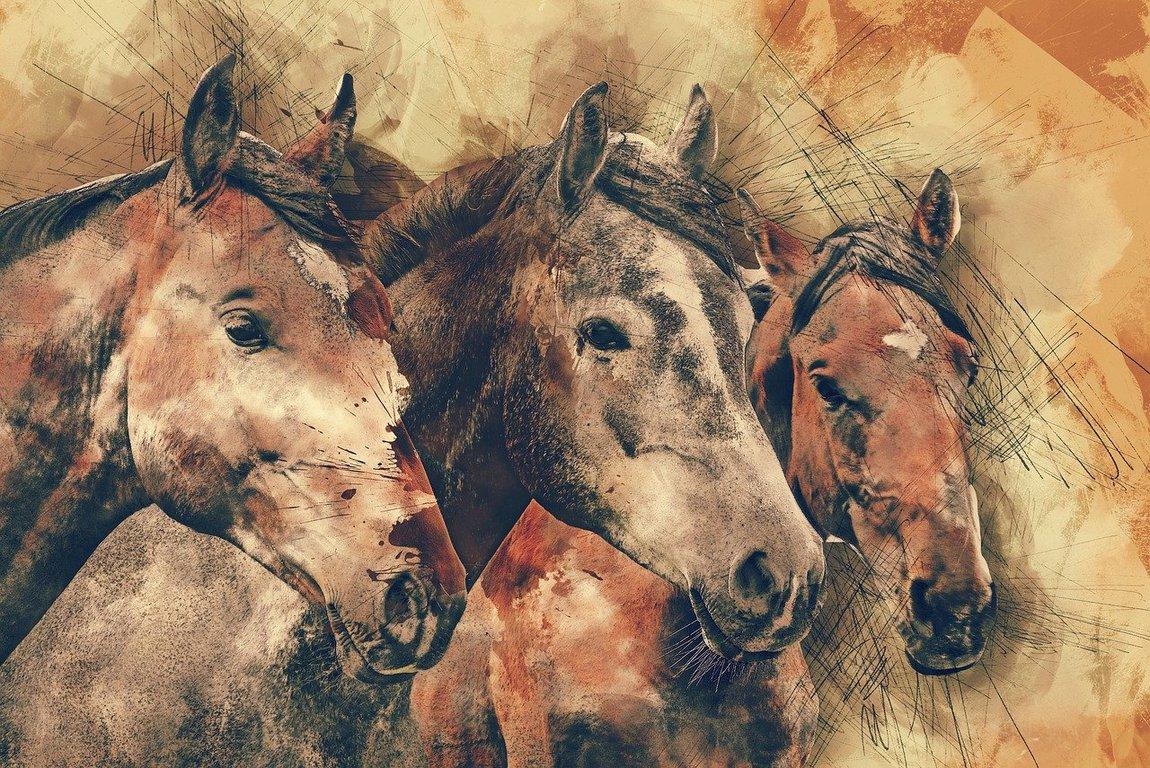 川崎競馬 無料 予想 買い目(馬単・馬複)南関、地方競馬