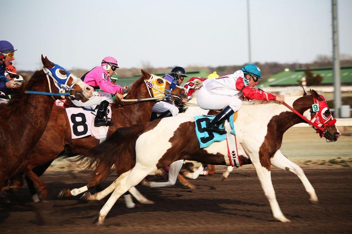 【クイーンSのデータ分析】人気、ステップレース、年齢、種牡馬など6項目から好走馬の傾向を探る